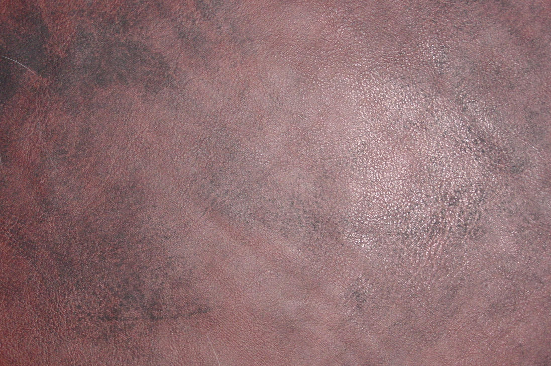 Leather by tmm-textures