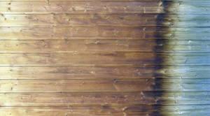 Wooden Door by tmm-textures