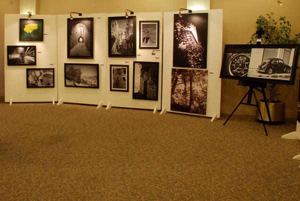 جانب من المعرض (تصويري)