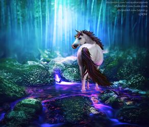 For Horse Phenomena