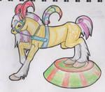 Horse Circus