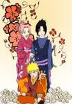 team 7 in kimono