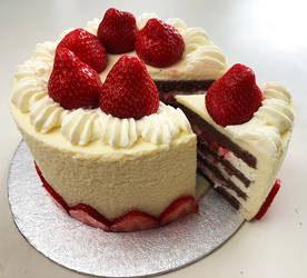 Strawberry and Chocolate Mousse Cake
