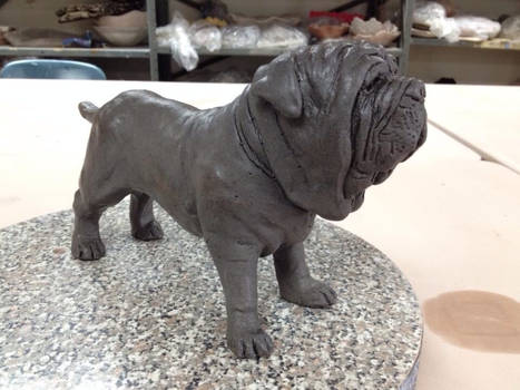 Ceramic Neapolitan Mastiff (finished)