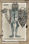 Chroniques Anatomiques V.II.II