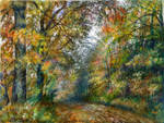 Autumn in the woods