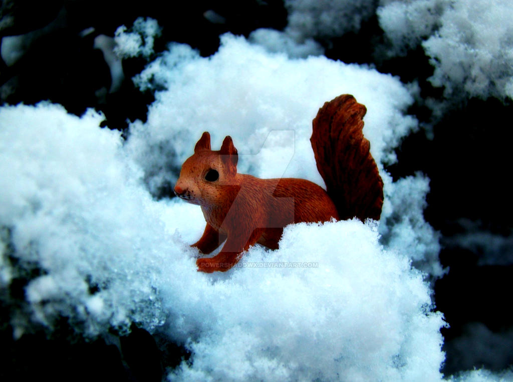 Squirrel by PowerShadowX