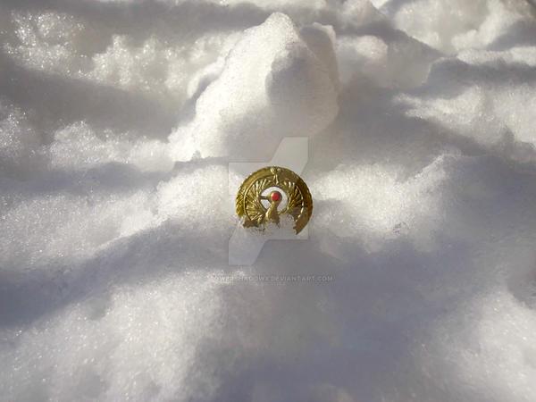 My Medallion! by PowerShadowX