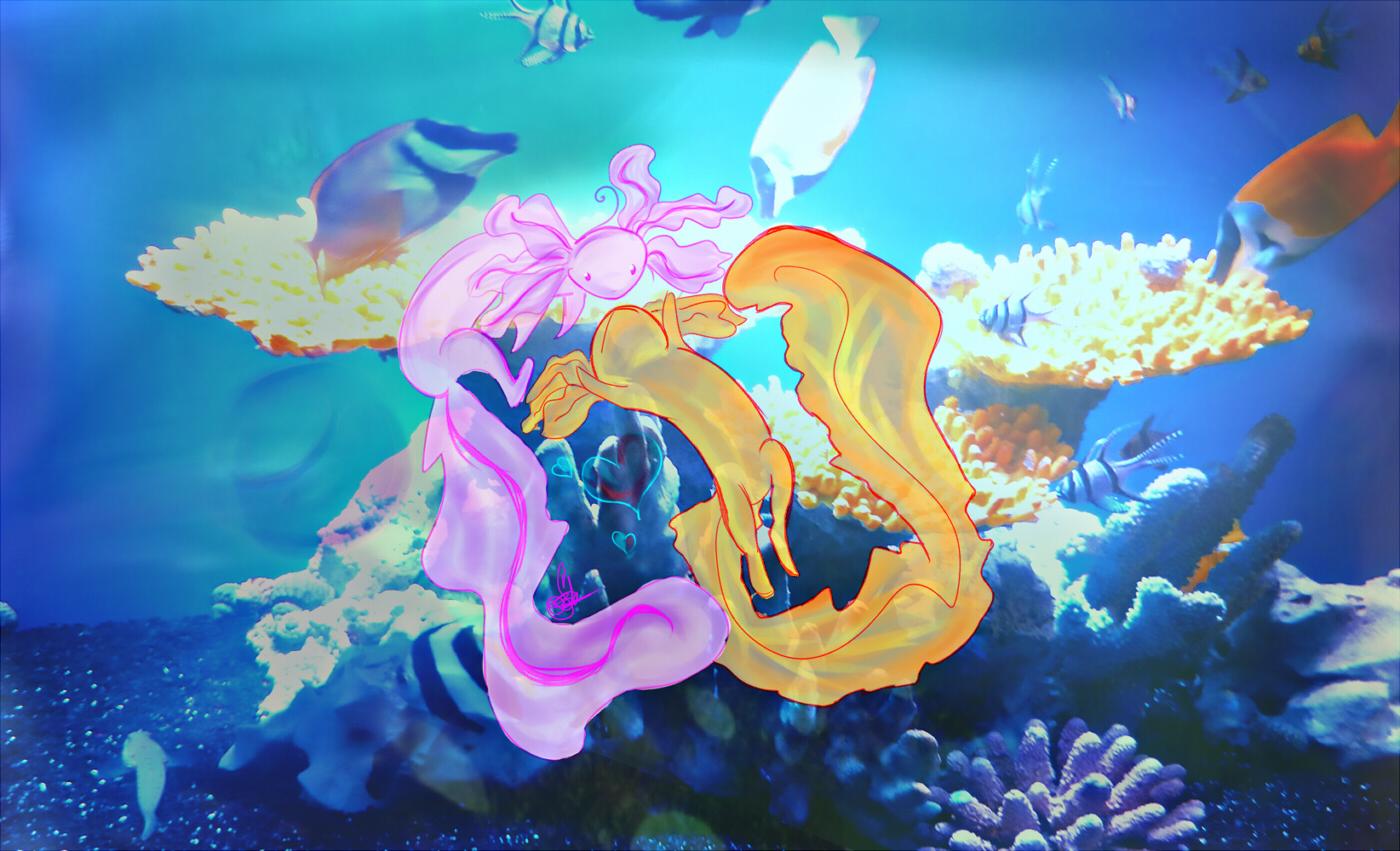 Axolotl wallpaper by SenSaii on DeviantArt