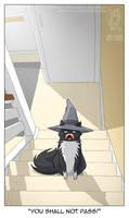 Gandalf Cat