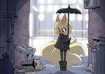 Kitsune vs Kitty