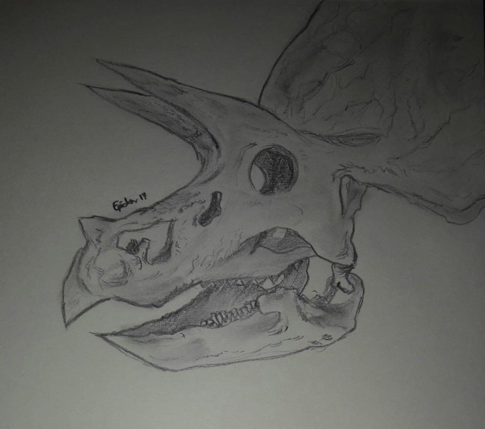 Triceraptops ! by Epi-chan21