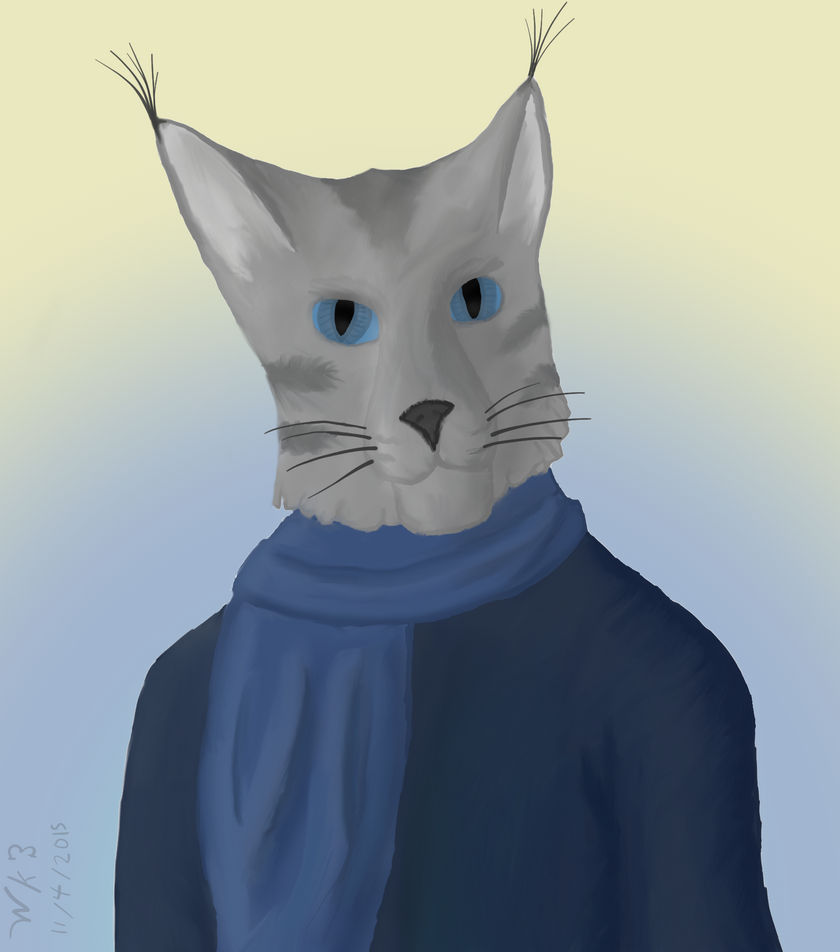 Cat in Winter Clothes by woundedkneecap