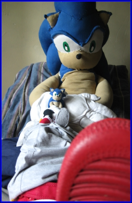 The Sonic plushies