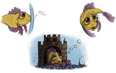 A Cute lil' Fishy