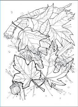 Autumn coloring card