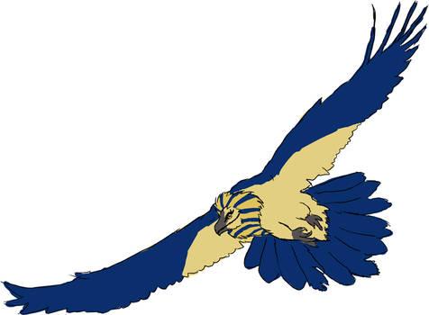 Pharaoh Vulture
