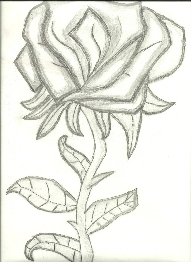 shaded flower by skyler1