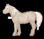 arabian [2/100 days of horses]