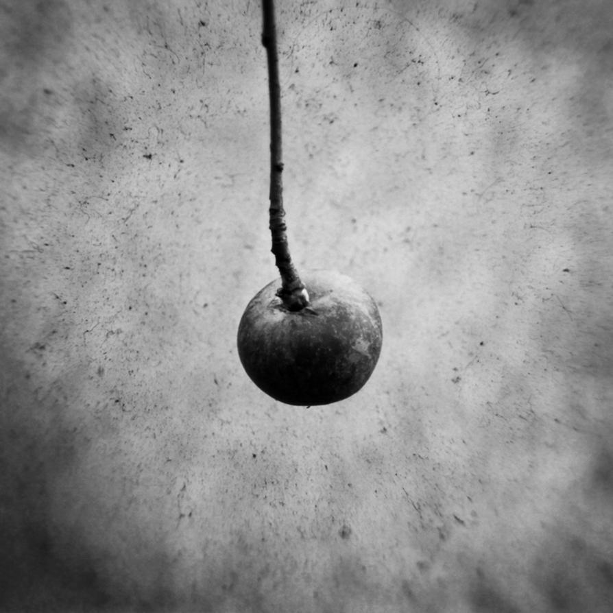 Bitter Apple by DpressedSoul