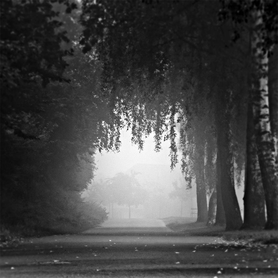 Morning Walk by DpressedSoul