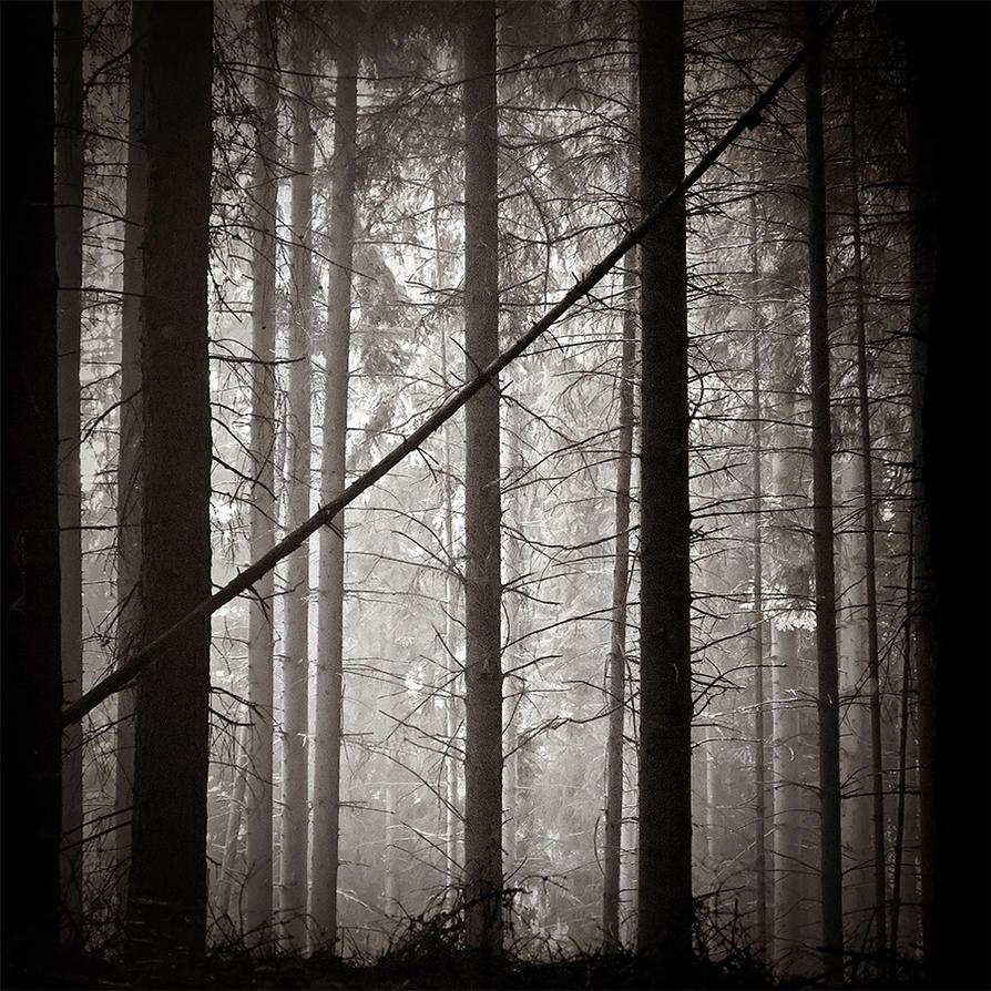 Inner Silence by DpressedSoul