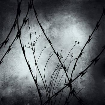 Forgotten Hopes by DpressedSoul