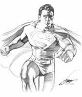 Superman / SuperCran by SteveStanleyArt