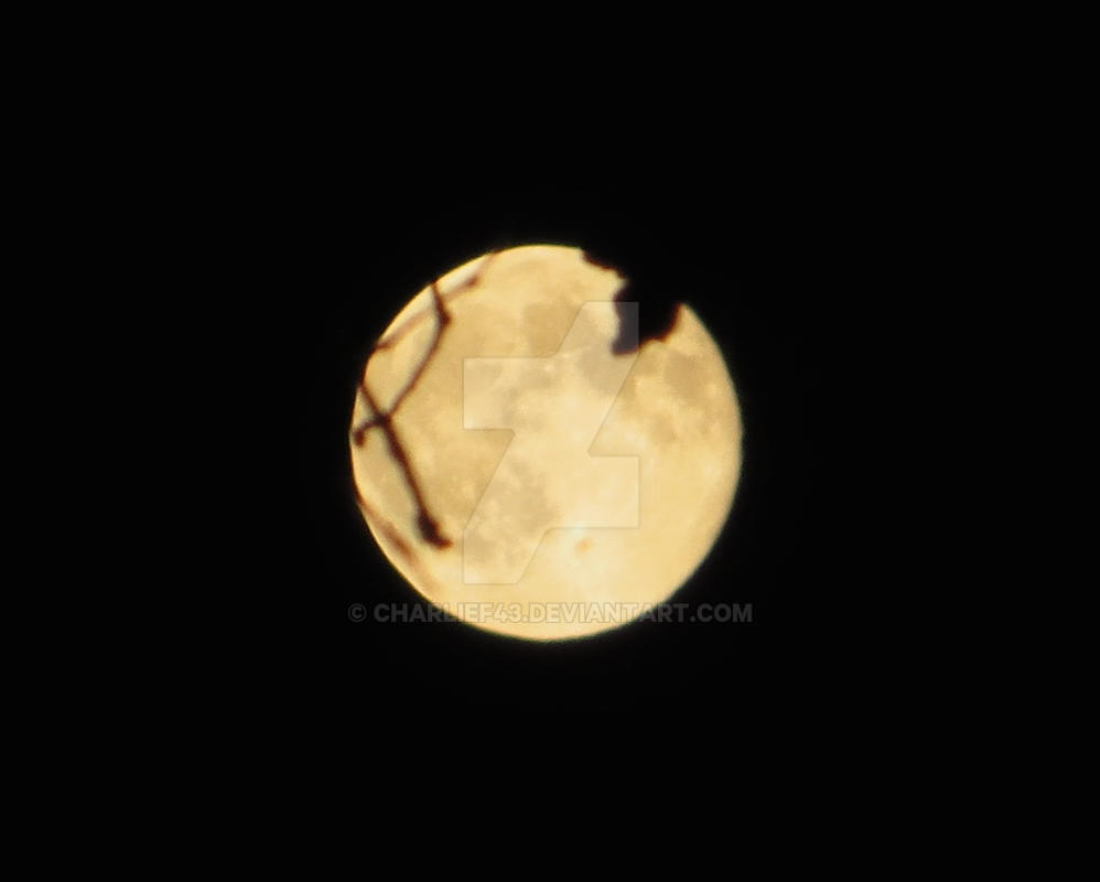 Super Moon 2014 by Charlief43