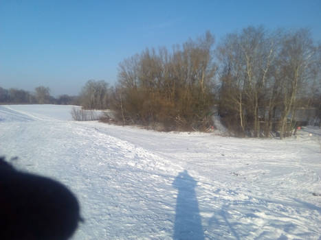 Vistula landscape #1