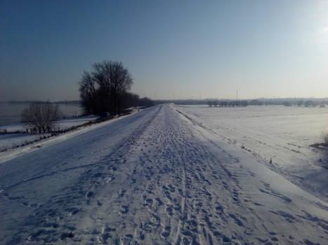 Vistula landscape #5