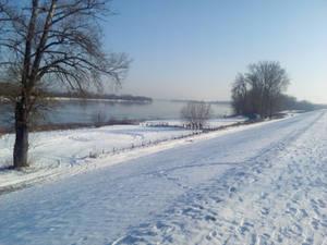 Vistula landscape #6