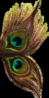 Peacock wings stock 1