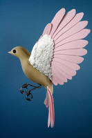 Pink paper and wood bird mobile by ZackMclaughlin