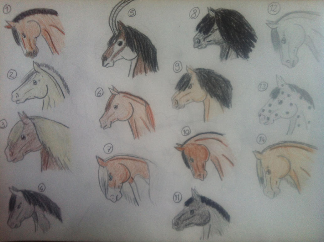 Easy Horse Drawings In Pencil Step By Step