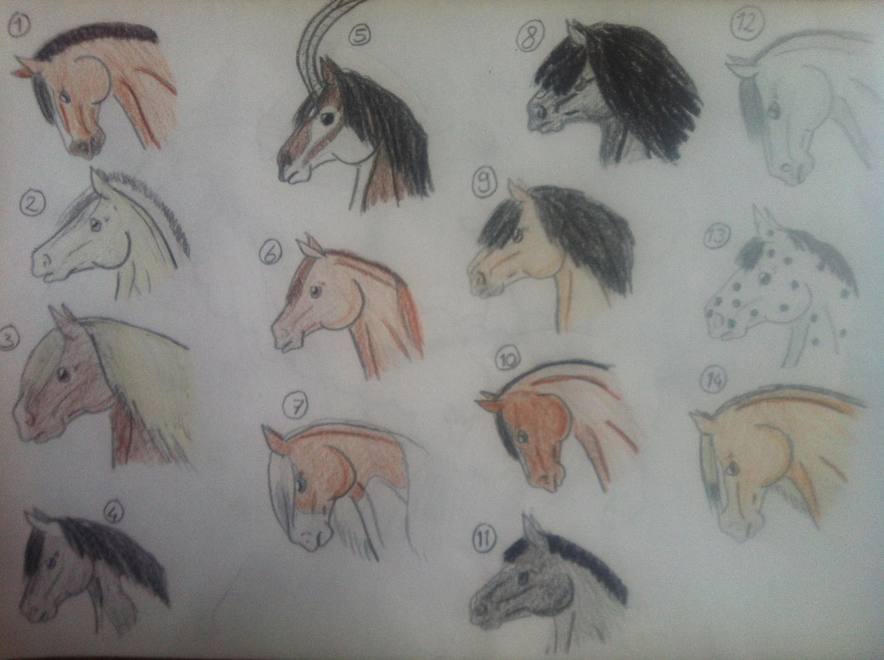 Horse Head Adopts, Draw Or Points 3 Left By Nikkiiq Horse Head Adopts, Draw  How To Draw A Horse Step By Step For Kids #howto