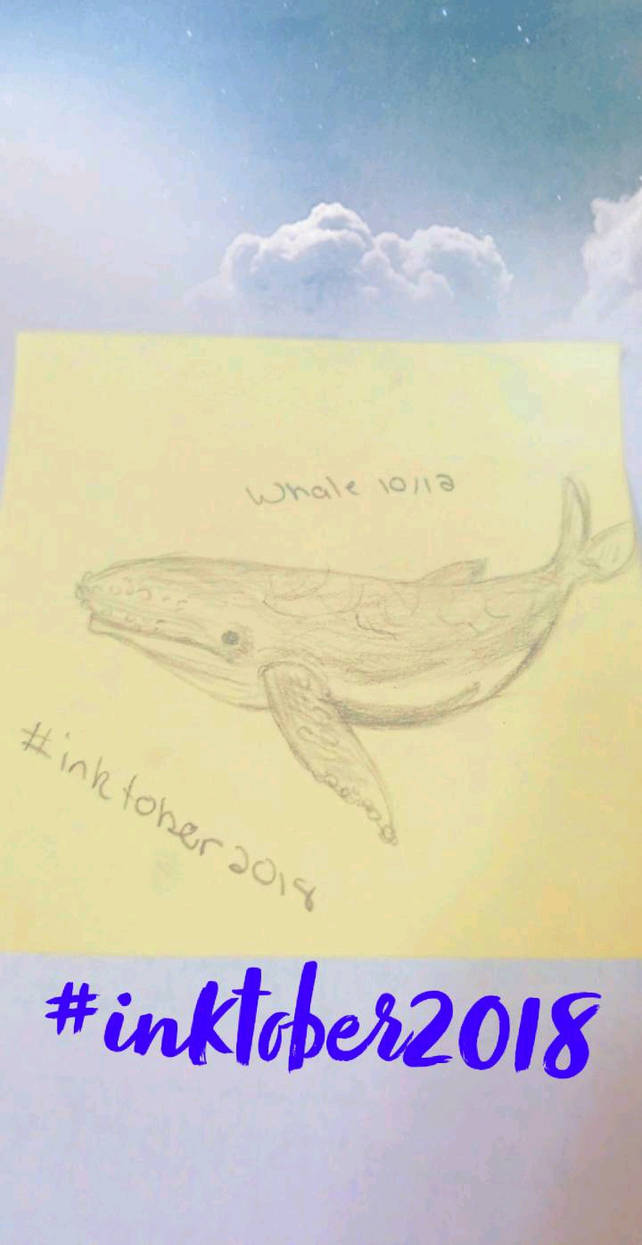 Inktober - 10/12 - Whale