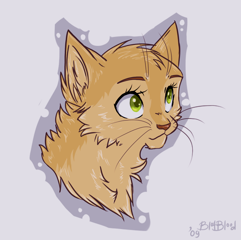 Sandstorm (Warrior Cats) | Death Battle Fanon Wiki | Fandom ...