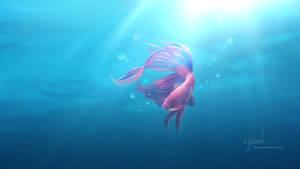 A desktop fish - wallpaper