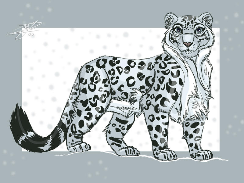 ::Snowleopard:: by Jasmiijn