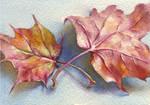 Autumn leaf-3. ACEO