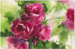 Roses 1. Diptych