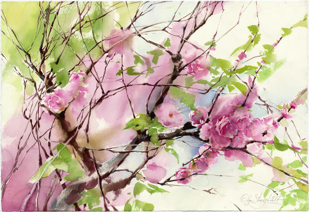 Sakura blossom by OlgaSternik