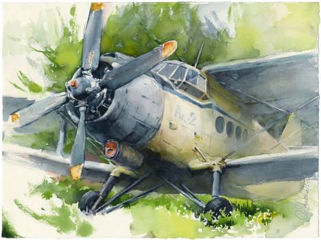 Old airplane (Antonov An-2)