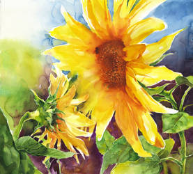 Sunflowers 2 by OlgaSternik