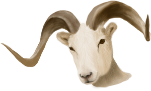 Painted Ram Head - unrestricted stock