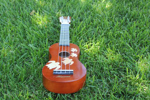 Ukulele in the Grass by bubblegraphics