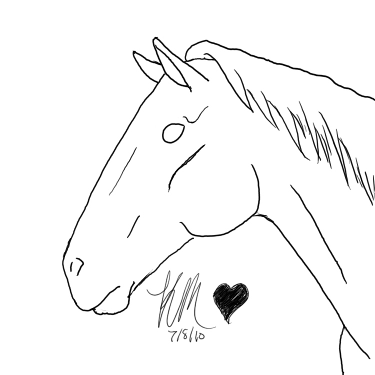 Line Art Horse Head : Horse head lineart by equidedesigns on deviantart