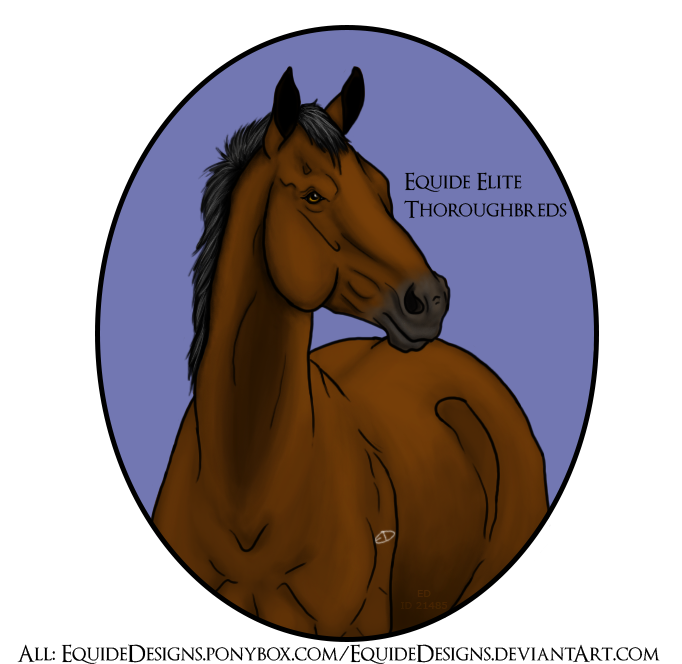 Equide TB Horse Picture by EquideDesigns