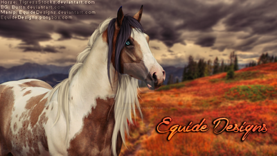 Autumn Premade by EquideDesigns